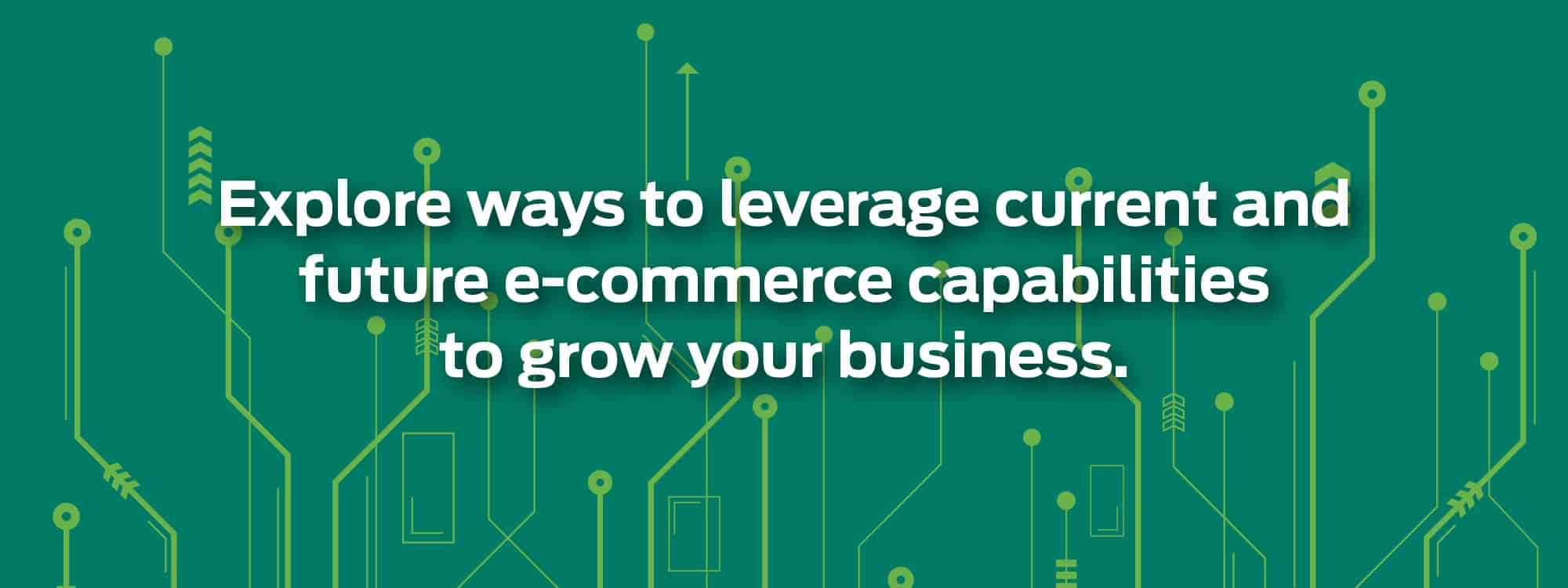 Explore ways to leverage current and future e-commerce capabilities to grow your business.